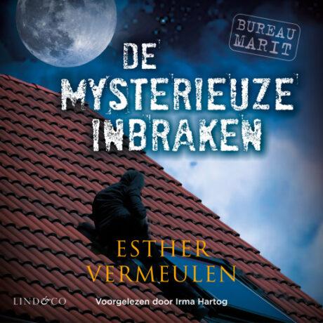 audioboek De mysterieuze inbraken