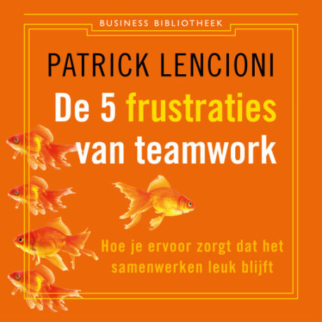 audioboek De vijf frustraties van teamwork